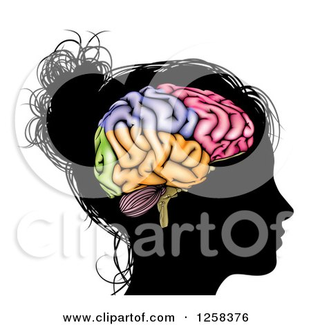 Clipart of a Silhouetted Woman's Head with a Visual Brain - Royalty Free Vector Illustration by AtStockIllustration