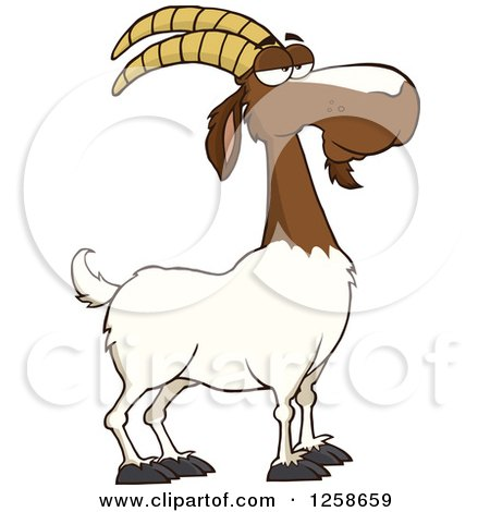 royalty-free (rf) clipart of boer goats, illustrations, vector