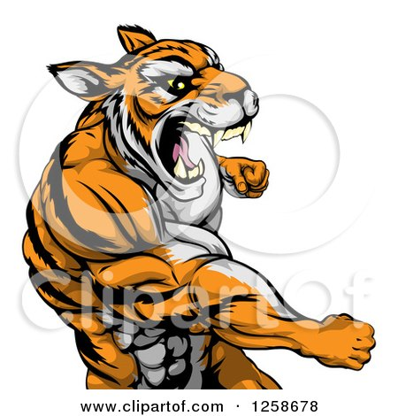 Clipart of a Mad Muscular Tiger Man Punching - Royalty Free Vector Illustration by AtStockIllustration