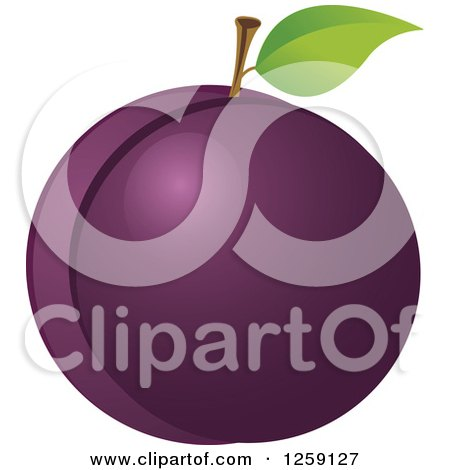 Clipart of a Plum with a Leaf - Royalty Free Vector Illustration by Pushkin