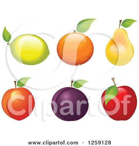 Clipart of Fruits with Leaves - Royalty Free Vector Illustration by Pushkin