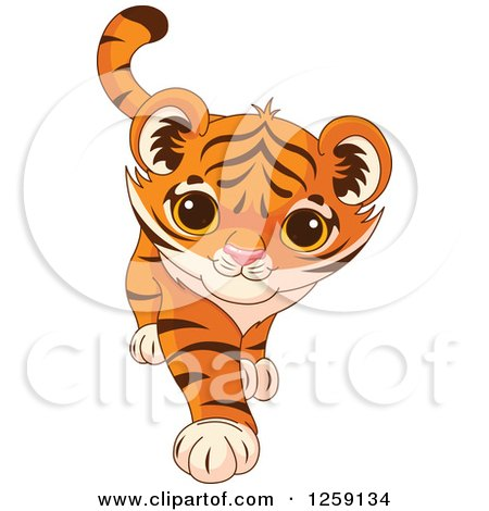 Clipart of a Cute Playful Tiger Cub Walking - Royalty Free Vector Illustration by Pushkin