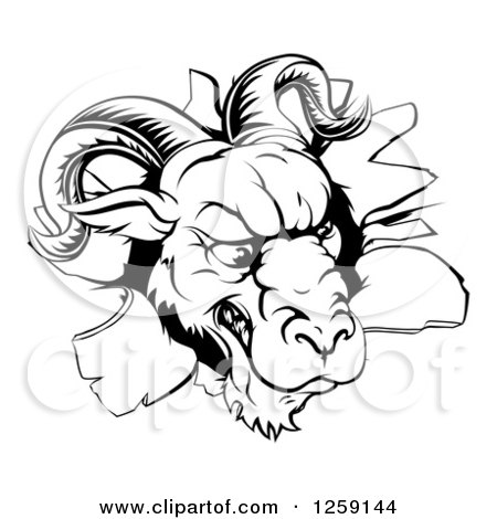 Clipart of a Black and White Angry Ram Breaking Through a Wall - Royalty Free Vector Illustration by AtStockIllustration