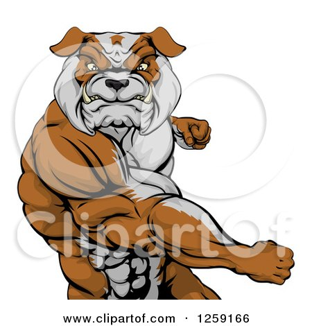 Clipart of an Angry Muscular Bulldog Man Punching - Royalty Free Vector Illustration by AtStockIllustration