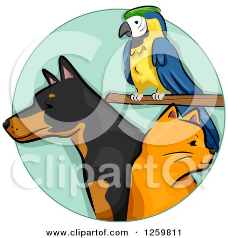 Clipart of a Parrot Ginger Cat and Doberman Dog - Royalty Free Vector Illustration by BNP Design Studio