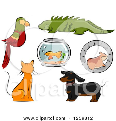 Clipart of a Parrot, Iguana, Fish Bowl, Hamster, Ginger Cat and Dachshund Dog - Royalty Free Vector Illustration by BNP Design Studio