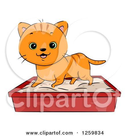 Clipart of a Happy Ginger Tabby Cat Using a Litter Box - Royalty Free Vector Illustration by BNP Design Studio