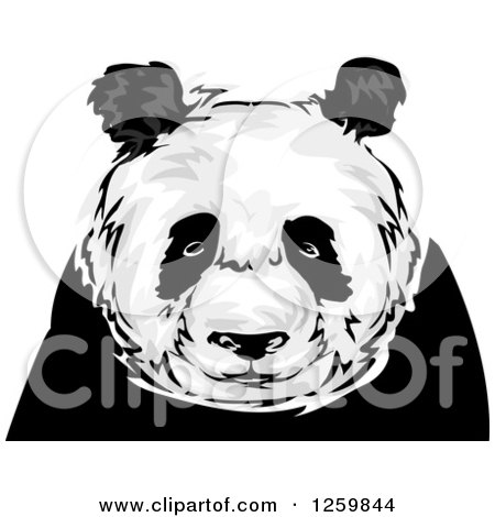 Clipart of a Panda Mascot - Royalty Free Vector Illustration by BNP Design Studio