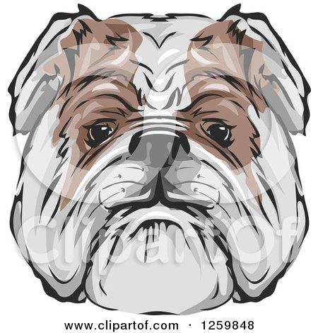 Bulldog Face Mascot Posters, Art Prints