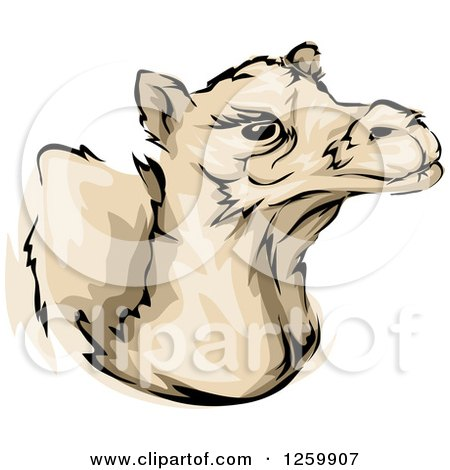 Clipart of a Camel Mascot - Royalty Free Vector Illustration by BNP Design Studio