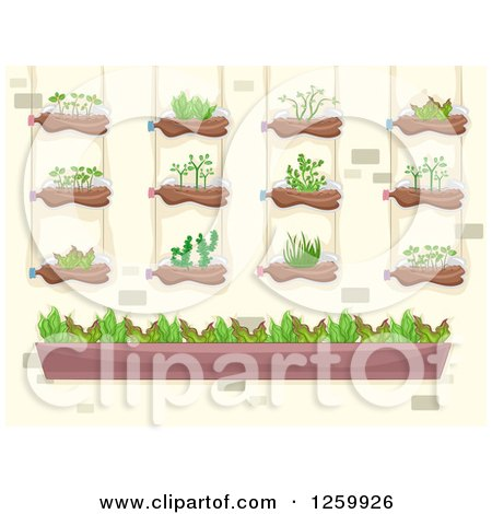 Clipart of a Vertical Garden on a Brick Wall - Royalty Free Vector Illustration by BNP Design Studio