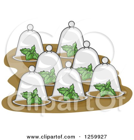 Clipart of Plants Under Glass Cloches - Royalty Free Vector Illustration by BNP Design Studio