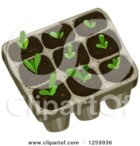 Clipart of a Tray with Seedling Plants - Royalty Free Vector Illustration by BNP Design Studio