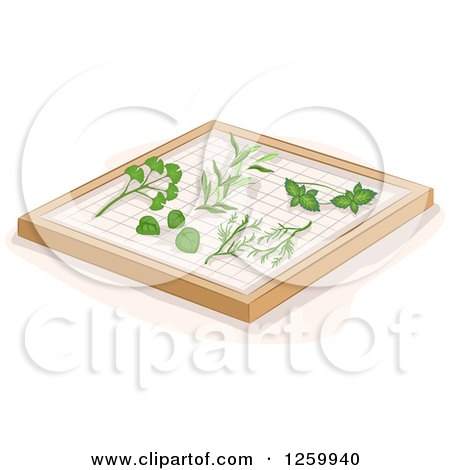 Clipart of Herbs on a Drying Rack - Royalty Free Vector Illustration by BNP Design Studio
