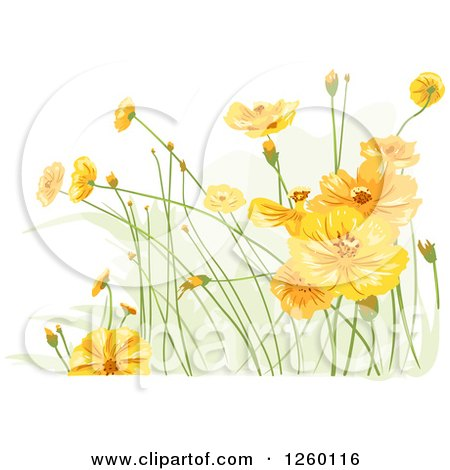 Clipart of Yellow Wildflowers - Royalty Free Vector Illustration by BNP Design Studio