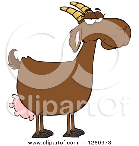 Royalty-Free (RF) Boer Goat Clipart, Illustrations, Vector Graphics #1