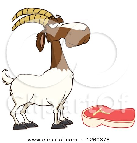 Clipart of a Red and White Male Boer Goat Wether by a Chevon Steak - Royalty Free Vector Illustration by Hit Toon