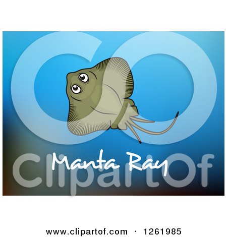 Clipart of a Manta Ray over Text and Gradient Blue - Royalty Free Vector Illustration by Vector Tradition SM