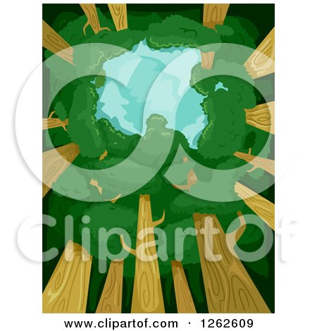 Clipart of a View Upwards Towards the Sky with a Tree Canopy - Royalty Free Vector Illustration by BNP Design Studio