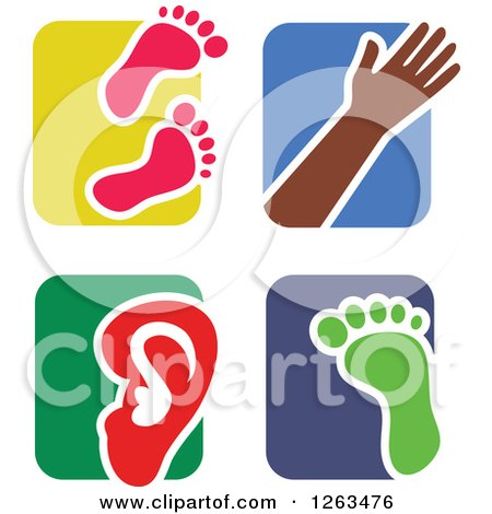 Clipart of Colorful Tile and Human Anatomy Icons - Royalty Free Vector Illustration by Prawny