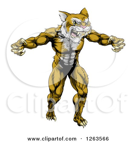 Clipart Of A Muscular Fierce Wildcat Man Attacking Royalty Free Vector Illustration