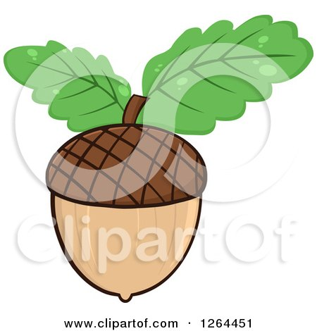 Clipart of an Acorn with Green Oak Leaves - Royalty Free Vector Illustration by Hit Toon