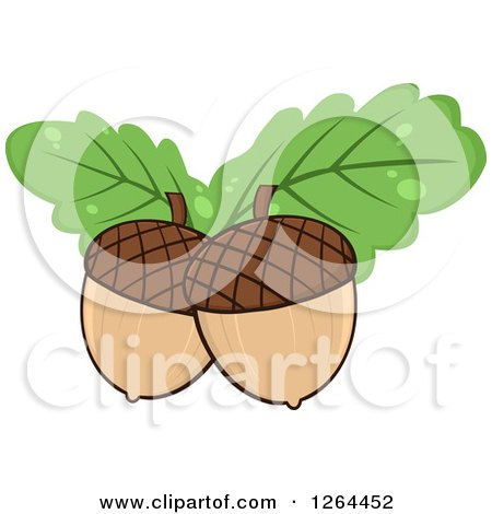 Clipart of Acorns with Green Oak Leaves - Royalty Free Vector Illustration by Hit Toon