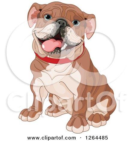 Clipart of a Cute Happy Sitting Brown English Bulldog - Royalty Free Vector Illustration by Pushkin