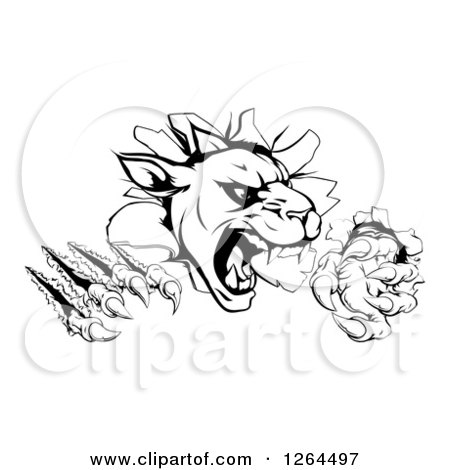 Clipart of a Black and White Panther Clawing Through a Wall - Royalty Free Vector Illustration by AtStockIllustration