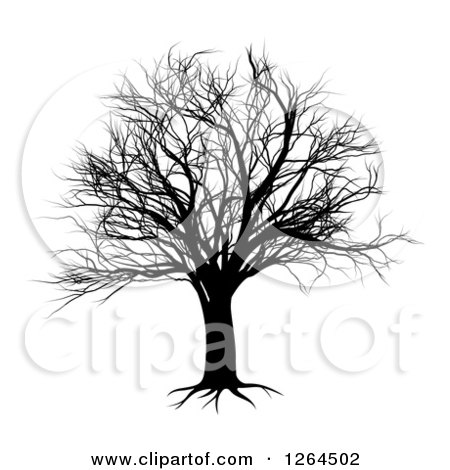 Clipart of a Black Bare Tree Silhouette - Royalty Free Vector Illustration by AtStockIllustration