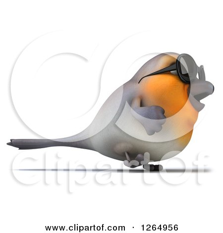 Clipart of a 3d Red Robin Bird Wearing Sunglasses and Walking - Royalty Free Illustration by Julos