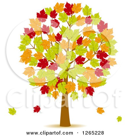 Clipart of a Fall Tree with Red Green and Orange Autumn Leaves - Royalty Free Vector Illustration by elaineitalia