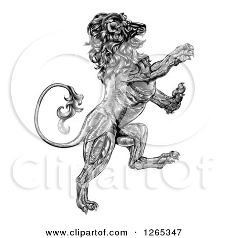 Clipart of a Black and White Engraved Vintage Rampant Lion - Royalty Free Vector Illustration by AtStockIllustration