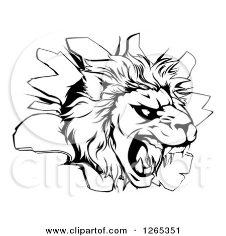 Clipart of a Black and White Roaring Lion Head Breaking Through a Wall - Royalty Free Vector Illustration by AtStockIllustration