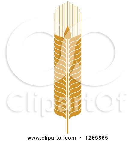 Clipart of a Strand of Wheat - Royalty Free Vector Illustration by Vector Tradition SM