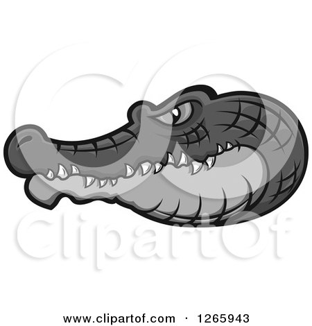 Clipart of a Gray Crocodile Head in Profile - Royalty Free Vector Illustration by Vector Tradition SM