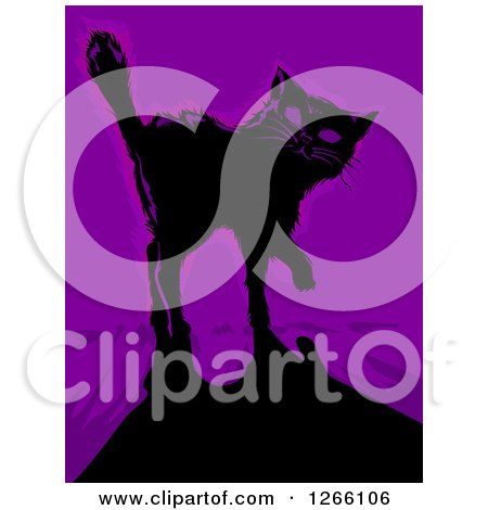 Clipart of a Black Cat and Shadow over Purple - Royalty Free Vector Illustration by BNP Design Studio