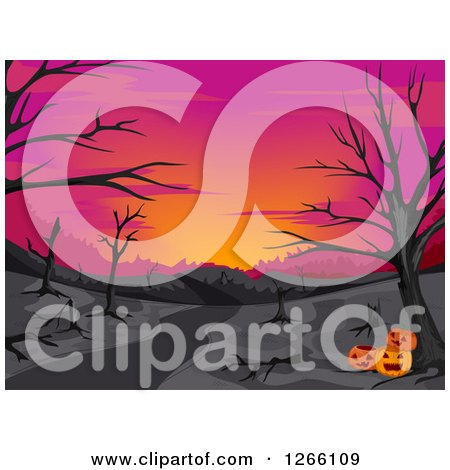 Clipart of a Pink Sunset with Bare Trees in the Woods and Halloween Jackolanterns - Royalty Free Vector Illustration by BNP Design Studio