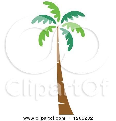 Clipart of a Palm Tree - Royalty Free Vector Illustration by BNP Design Studio