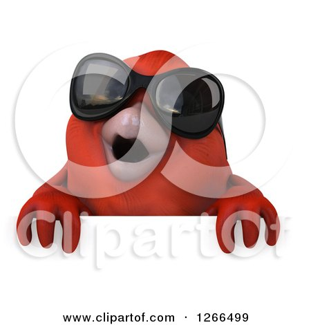 Clipart of a 3d Red Bird Wearing Sunglasses over a Sign - Royalty Free Illustration by Julos