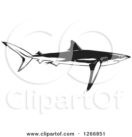 Clipart of a Black and White Shark Swimming in Profile - Royalty Free Vector Illustration by dero