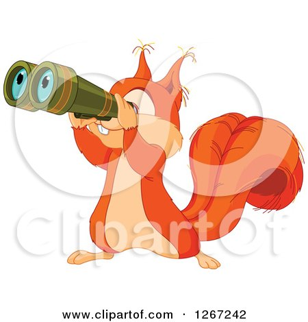 Clipart of a Cute Squirrel Looking Through Binoculars - Royalty Free Vector Illustration by Pushkin