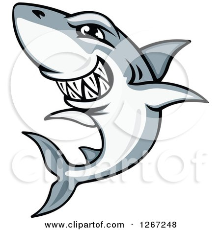 Clipart of a Vicious Grinning Gray and White Shark - Royalty Free Vector Illustration by Vector Tradition SM
