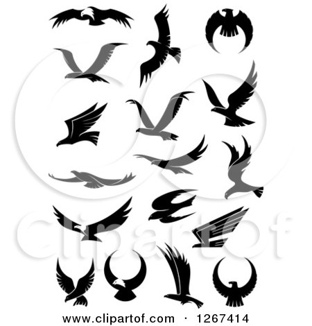 Clipart of a Black and White Flying Eagles 3 - Royalty Free Vector Illustration by Vector Tradition SM