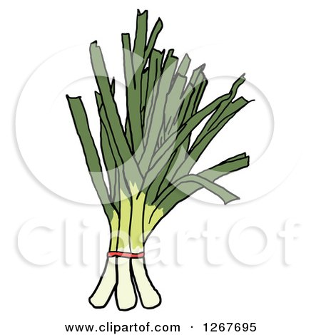 Clipart of Bunches of Leeks - Royalty Free Vector Illustration by LaffToon