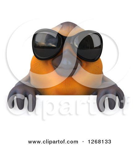 Clipart of a 3d Red Robin Bird Wearing Sunglasses over a Sign - Royalty Free Illustration by Julos