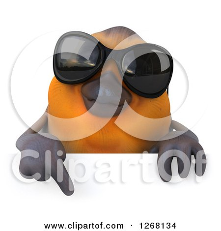 Clipart of a 3d Red Robin Bird Wearing Sunglasses and Pointing down over a Sign - Royalty Free Illustration by Julos