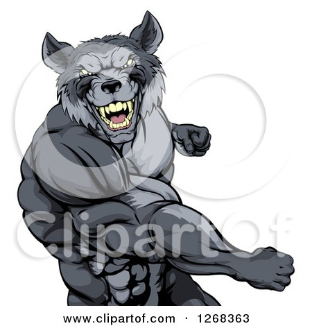 Clipart of a Tough Vicious Muscular Wolf Man Punching - Royalty Free Vector Illustration by AtStockIllustration