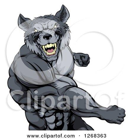 Tough Vicious Muscular Wolf Man Punching Posters, Art Prints