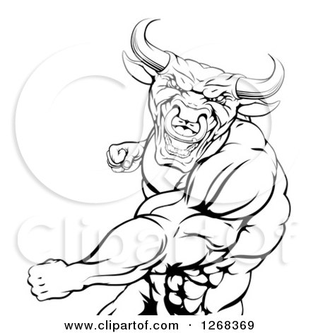 Clipart of a Black and White Angry Muscular Bull or Minotaur Man Mascot Punching - Royalty Free Vector Illustration by AtStockIllustration